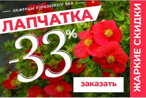 Температура Растет до -33% на саженцы Лапчатки