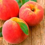 Персик Обычный