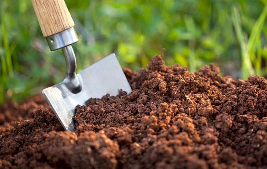Види  садового ґрунту: як визначити тип, як поліпшити структуру, і які рослини вирощувати