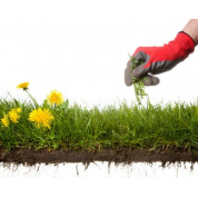 Средства для борьбы с сорняками (гербициды)