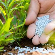 Удобрения в гранулах