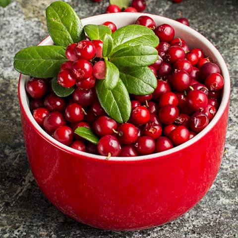 Брусника Ред Перл (Red Pearl)
