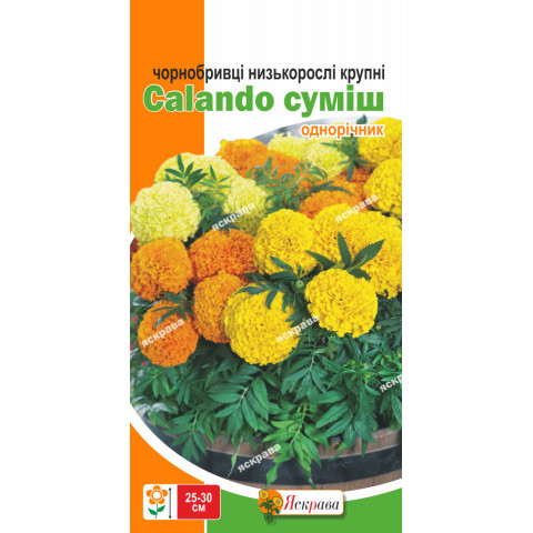 Бархатцы низкие Calando  смесь 0.3 г