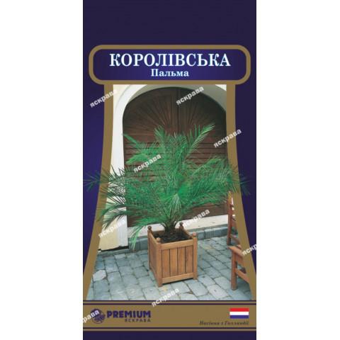 Пальма Королевская (5 семян)