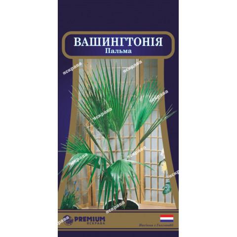 Пальма Вашингтония (5 семян)