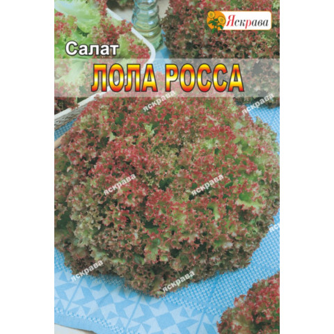 Салат Лолла Росса 10 гр