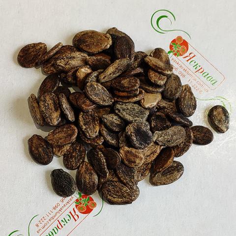 Арбуз Чарльстон Грей (семена) 100 г