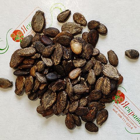 Арбуз Талисман F2 (семена) 100 г