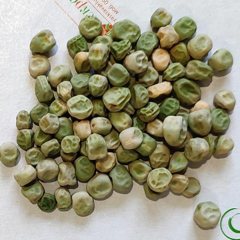 Горох овощной Стригунок (семена) 500 г