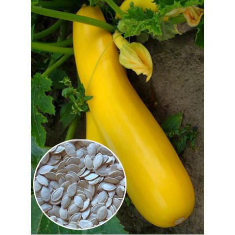 Кабачок Итальянский оранжевый (семена) 100 г