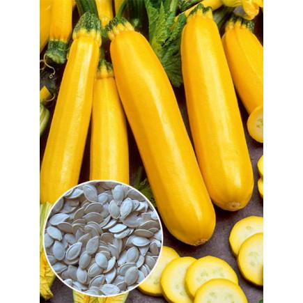 Кабачок желтый Золотинка (семена) 100 г