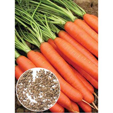 Морковь Красный великан (семена) 100 г