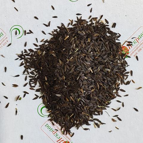 Салат Сніжинка (насіння) 100 г