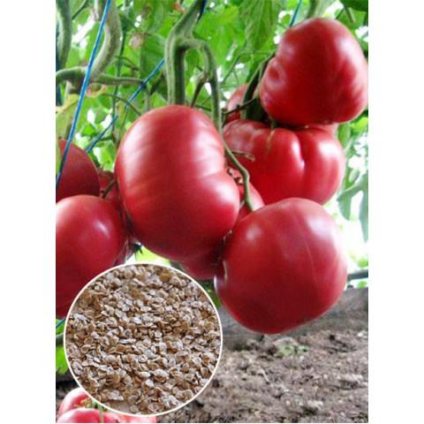 Томат Рожевий гігант (насіння) 20 г