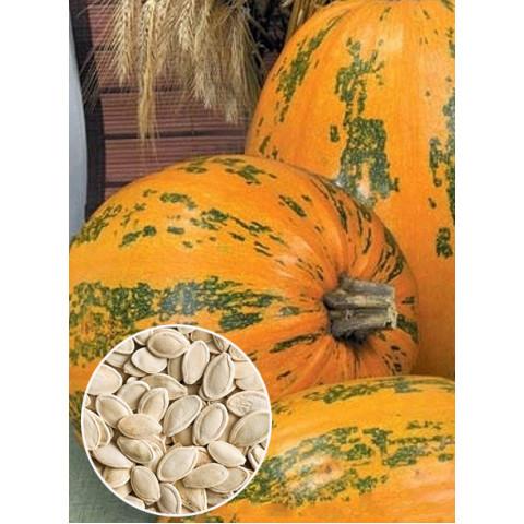 Гарбуз Український багатоплідний (насіння) 100 гр