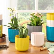 Горщики пластмасові для квітів