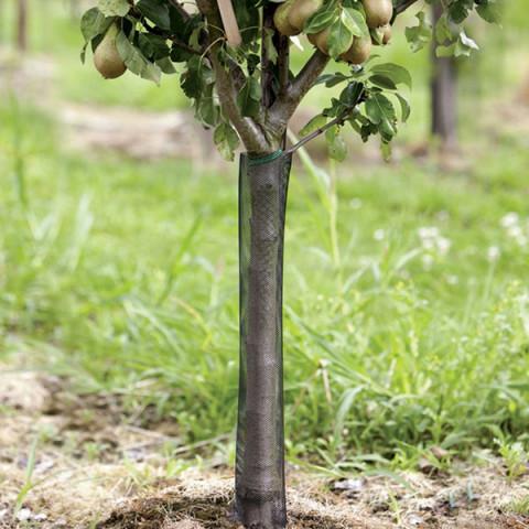 Сітка Treex (35.0*55.0) для захисту саджанців від гризунів