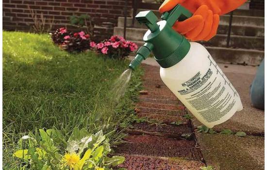 Гербіциди післясходові – позбавляємося від бур'янів, захищаємо урожай в саду та городі