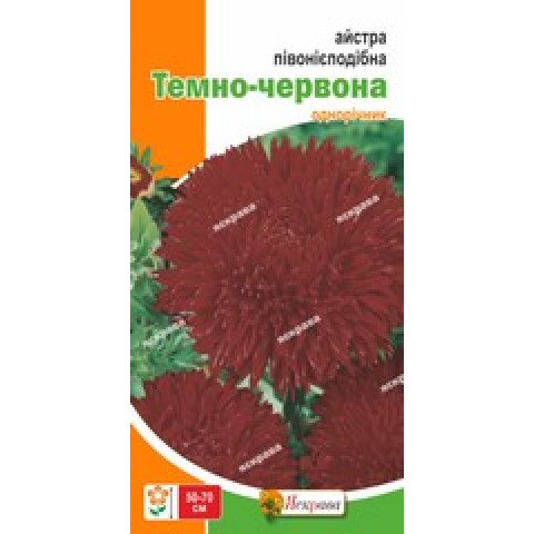 Астра пионоподобная Темно-красная 0.3 гр