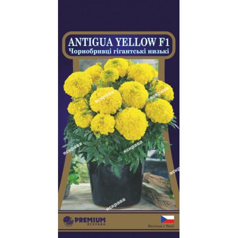 Чорнобривці низькорослі Antigua Yellow F1 (гігантські) 5 насінин