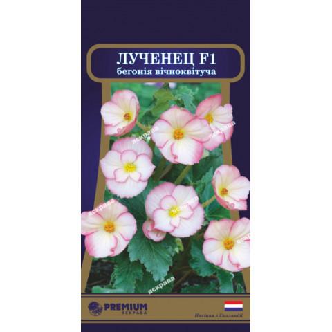 Бегонія вічноквітуча Лученец F1 (10 насіння в оболонці)