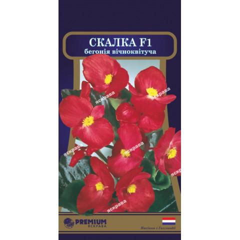 Бегонія вічноквітуча Скалка F1 (10 насіння в оболонці)