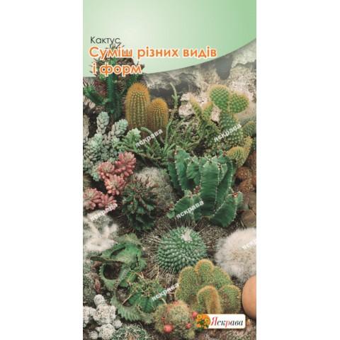 Кактус смесь различных видов и форм 0.2 гр