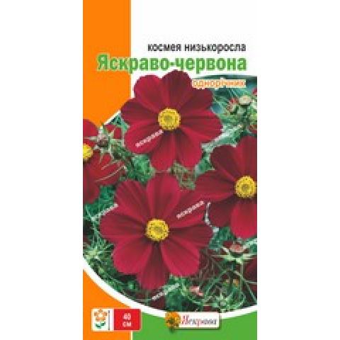 Космея нискорослая Ярко-красная 0.15 гр