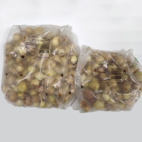Лук севок Штутгартер Ризен 0.5 кг
