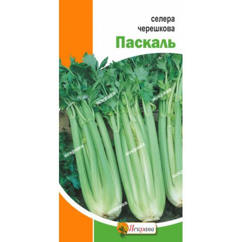 Сельдерей черешковый Паскаль 0.5 гр