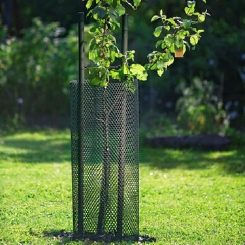 Сітка Treex (19.5*55.0) для захисту саджанців від гризунів