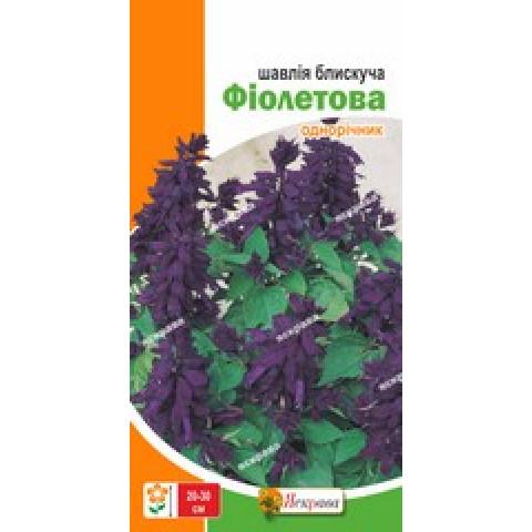 Шалфей блестящий Фиолетовый 0.2 гр