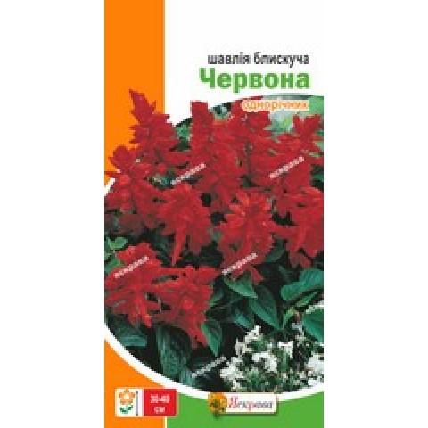 Шалфей блестящий Красный 0.2 гр