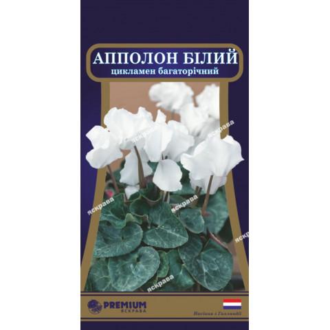 Цикламен многолетний Аполлон белый 5 семян