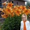 Лілія OT гібрид Orange Space