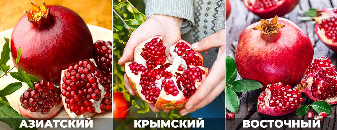 Лучшие сорта граната: Крымский, Восточный, Азиатский, фото, описание