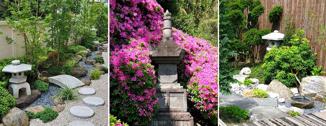 Растения и камни в японском саду