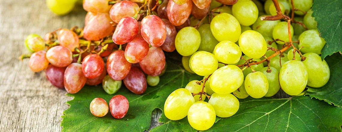 ТОП 10 сортов моростойкого винограда