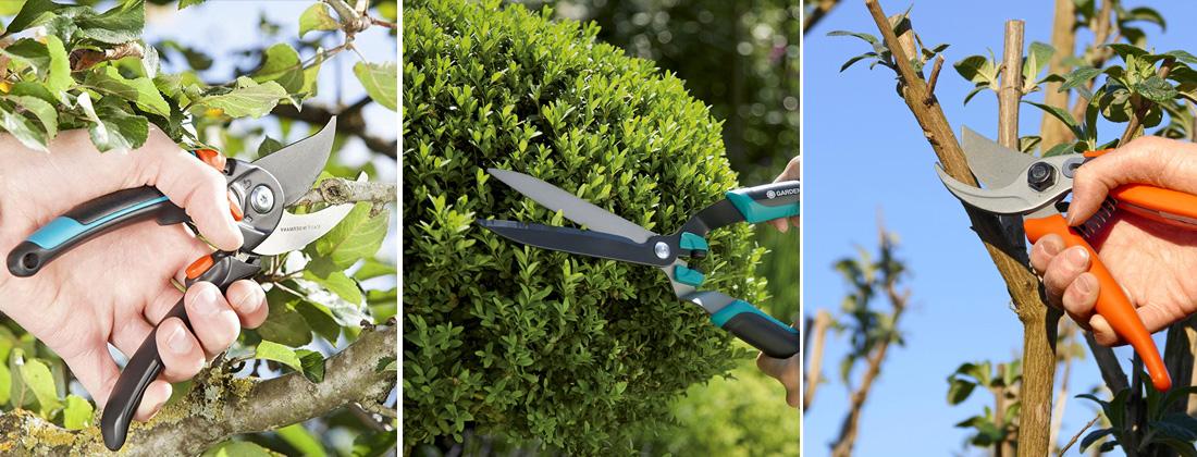 Садовый секатор, садовые ножницы фото