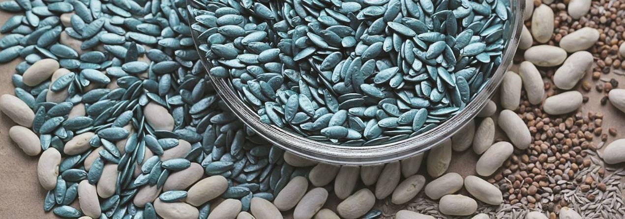 Инкрустированные семена, драже, фото