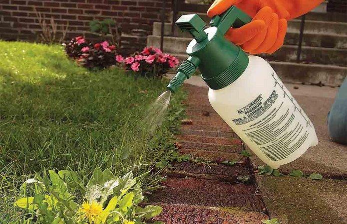 Борьба с сорняками в саду гербициды, фото