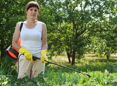 Способы и методы борьбы с сорняками, фото