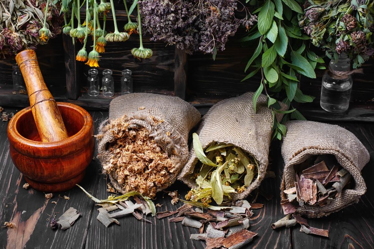 Как заготавливать и хранить лекарственные травы в домашних условиях, фото