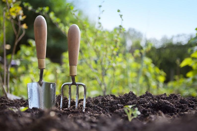 Основные работы в саду в апреле