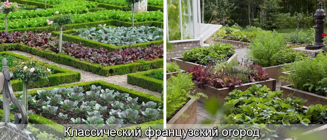 Декоративный огород, французский огород, красивый огород