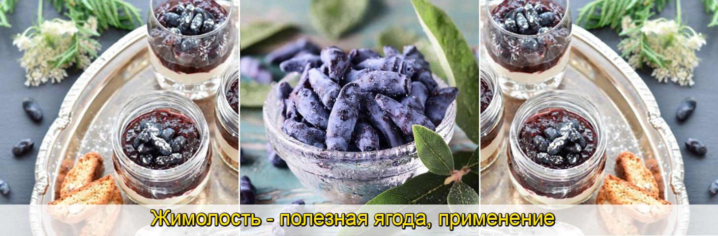 саженцы жимолости, синие ягоды, фото