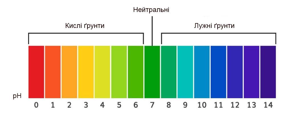 Кислотність ґрунту: нейтральні, кислі, лужні
